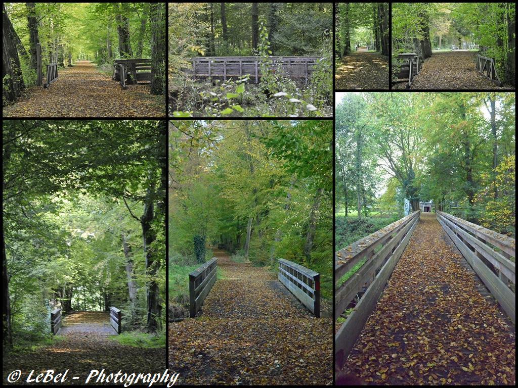 Petite ballade dans le parc de l'Abbaye de Liessies dans le Nooooooooooooooorrrd ! dans Cartes postales 2012-10-152-copier