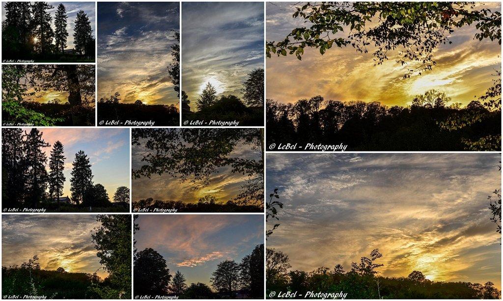 Coucher de soleil au dessus du parc de l'abbaye de Liessies dans le Ch'Nord ! dans Cartes postales desktop1-copier