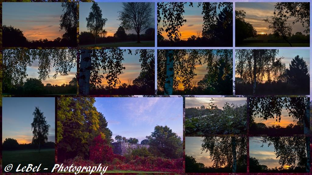 Pêle-mêle du lever de soleil de dimanche matin dans le Nord ! dans Cartes postales exportation-sans-titre-copier1