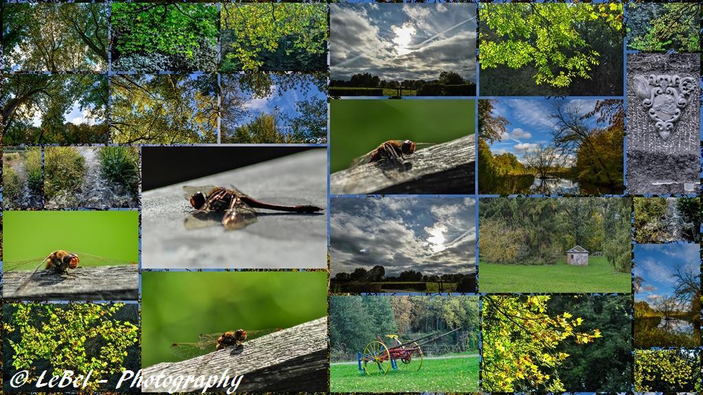 Petite carte postale du parc de l'Abbaye de Liessies ! dans Automne exportation-sans-titre1-copier