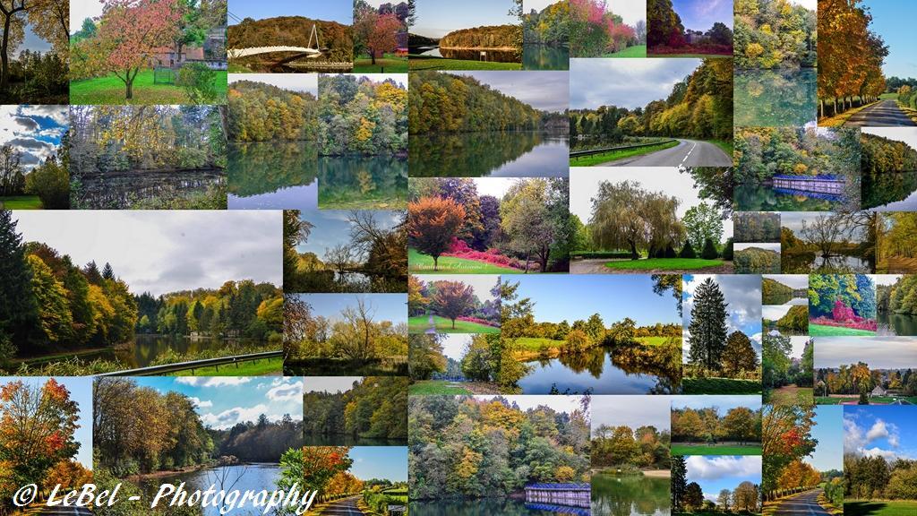 Les couleurs d'automne dans l'Avesnois et alentours ! dans Automne mes-montages1-copier
