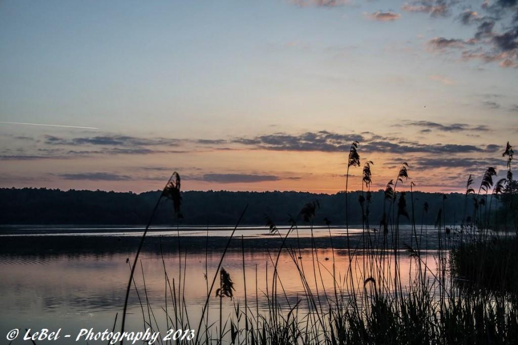 A l'aube sur l'étang du Hayon à Trélon ! dans Photos dsc00409-copier