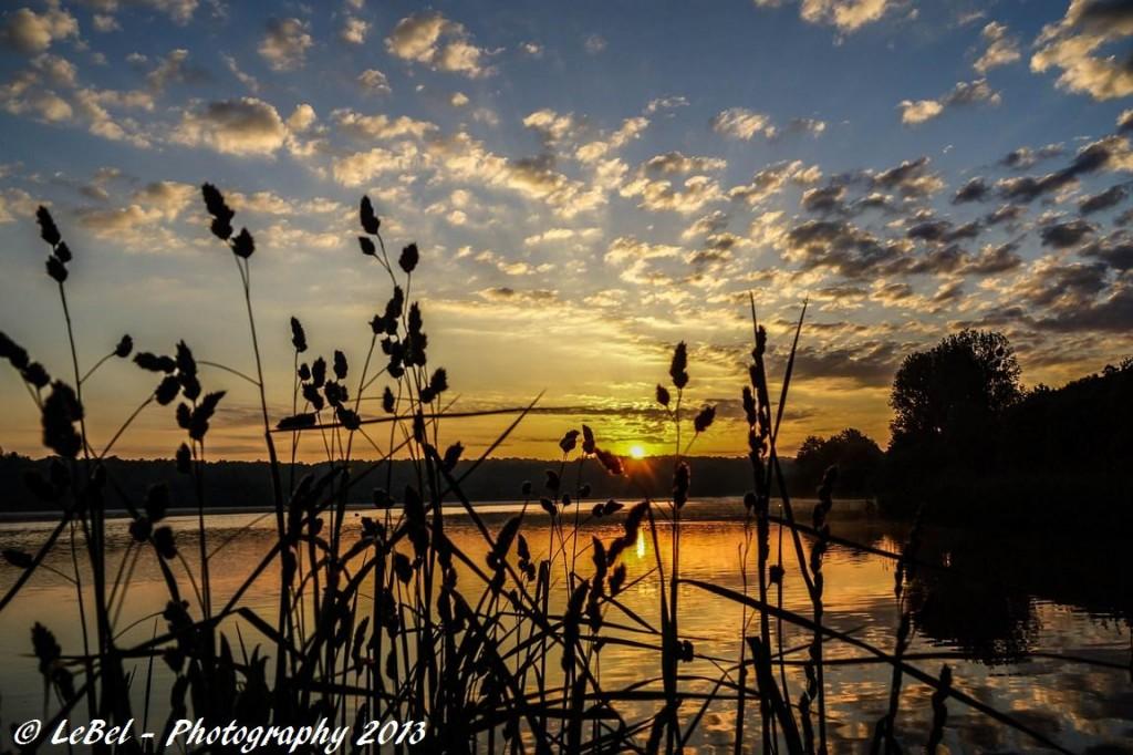 A l'aube sur l'étang du Hayon à Trélon ! dans Aube dsc00468-copier