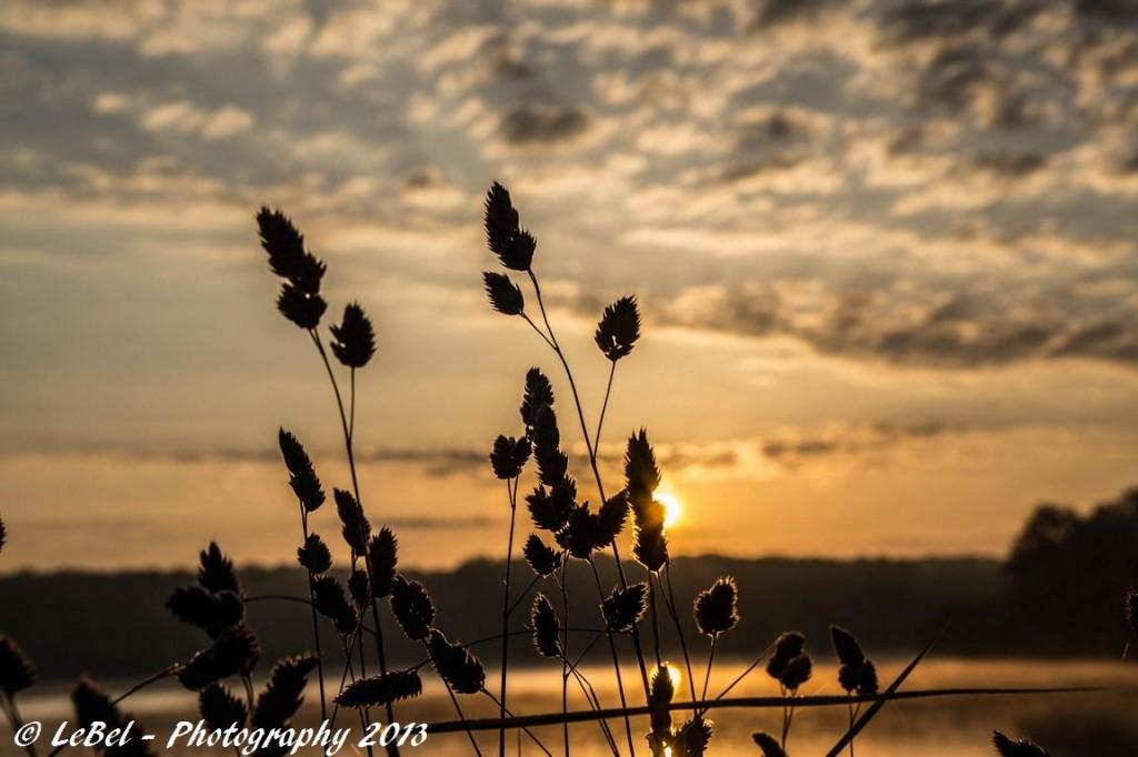 A l'aube sur l'étang du Hayon à Trélon ! dans Aube dsc00488-copier1